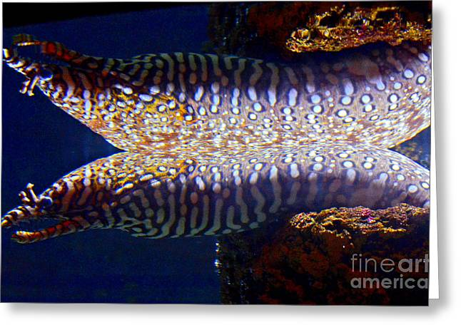 Dragon Moray Eels Greeting Card by Pravine Chester