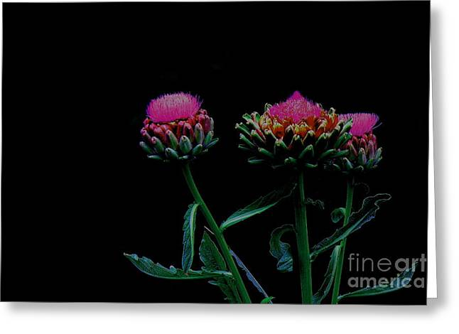 Draped In Darkness Greeting Card by Allen Sindlinger