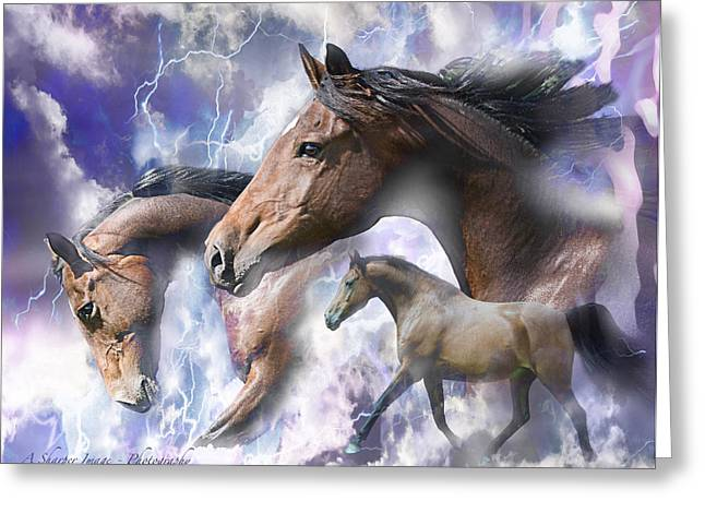 Dream Horses Greeting Card by Linda Finstad