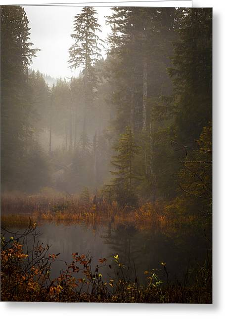 Dream Of Autumn Greeting Card by Mike Reid