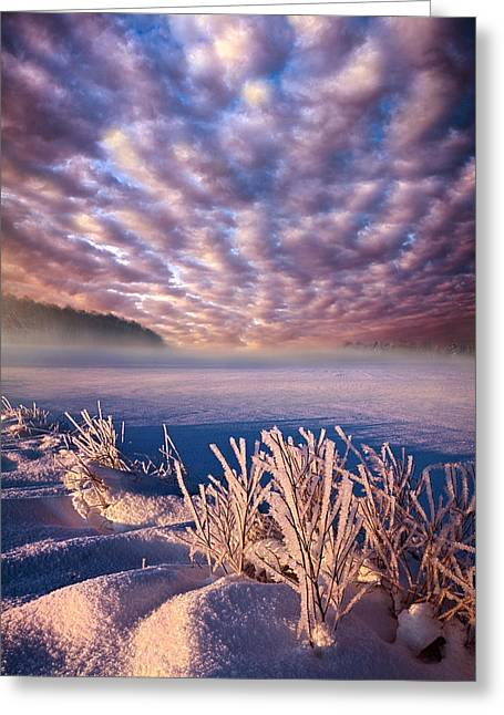Dream Of Waking Greeting Card by Phil Koch