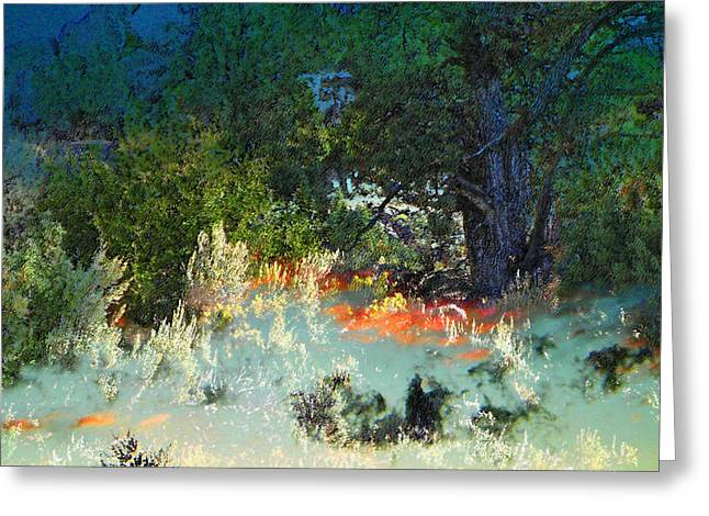 Dreaming Of Wyoming Greeting Card by Lenore Senior and Dawn Senior-Trask