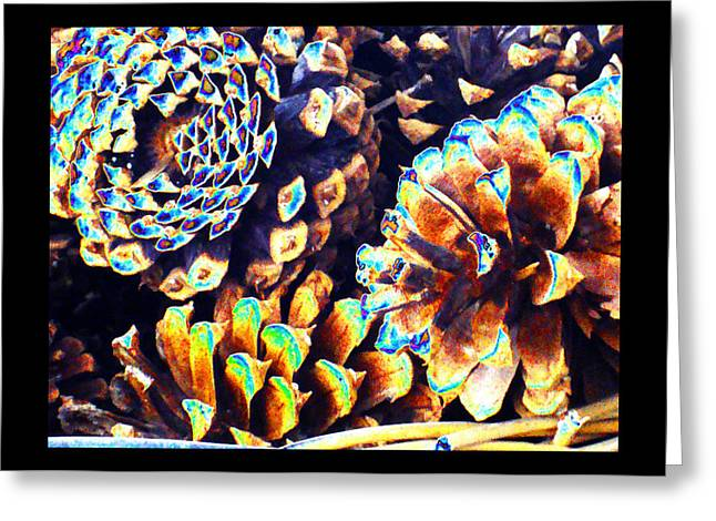 Greeting Card featuring the photograph Dreamtime Pinecones by Susanne Still