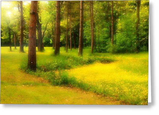 Dreamy Meadow Greeting Card by Cindy Haggerty