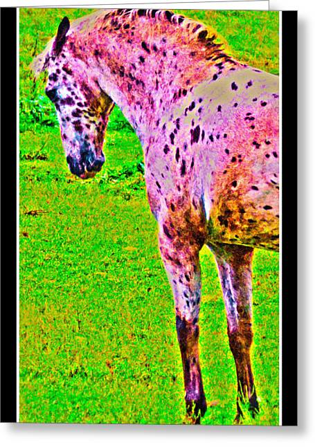 Dressage Test Greeting Card by Betsy Knapp