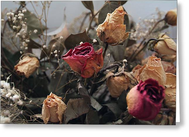 Dried Roses Greeting Card