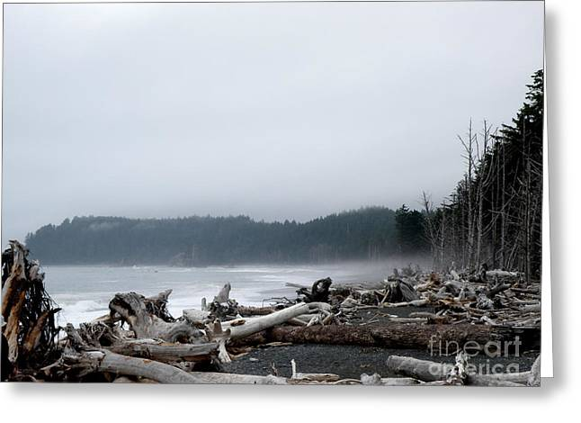 Driftwood 5 Greeting Card by Tanya  Searcy