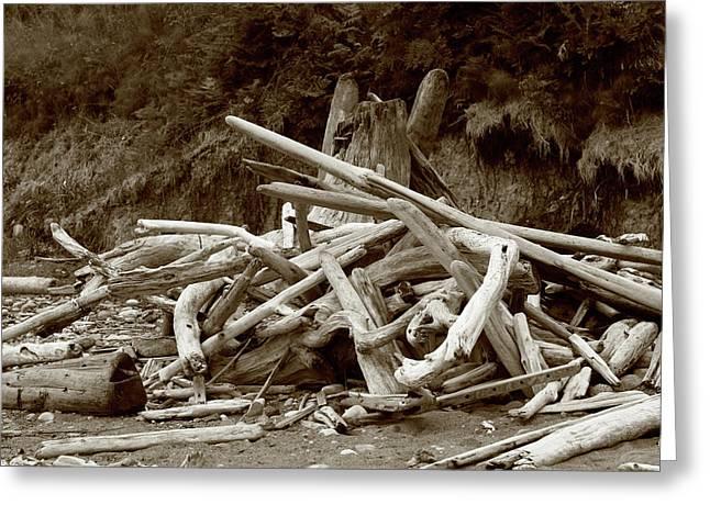 Driftwood Pile San Juan Greeting Card