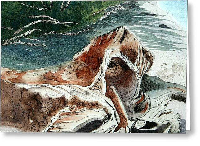Driftwood-wisconsin Point Greeting Card
