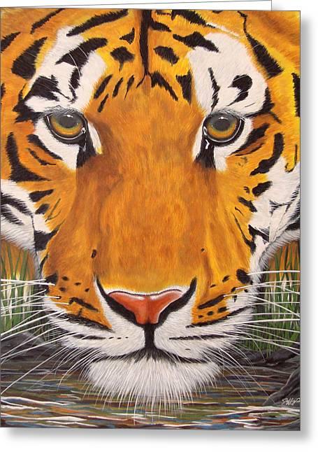 Drinking Tiger Greeting Card by Jeffrey Oldham