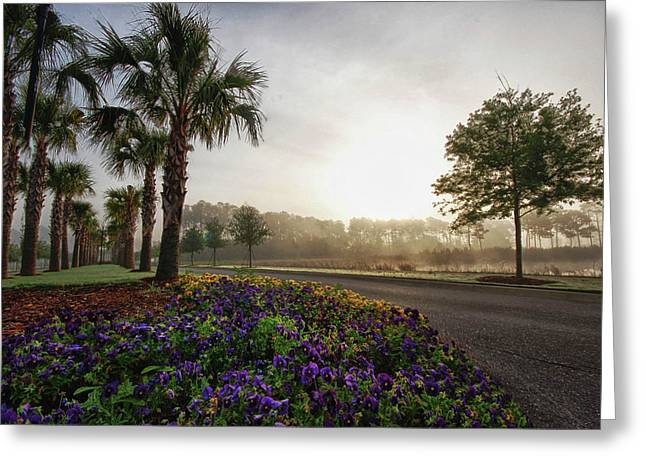 Driveway Colors Greeting Card by Michael Thomas
