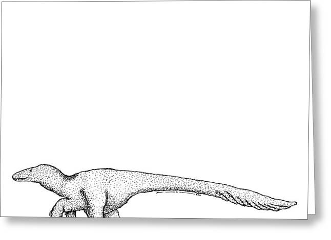 Dromaeosauroides - Dinosaur Greeting Card by Karl Addison