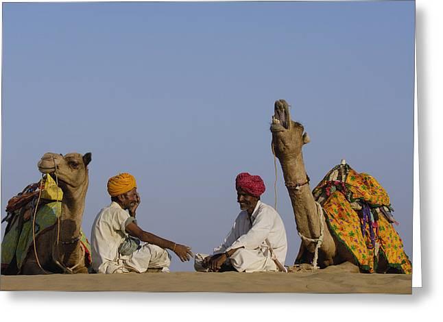 Dromedary Camelus Dromedaries Pair Greeting Card by Pete Oxford