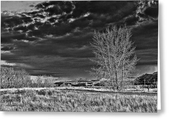 Drumheller Valley In Black And White Greeting Card by Jim Justinick