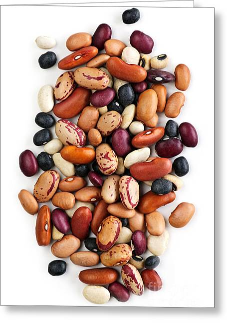 Dry Beans Greeting Card by Elena Elisseeva