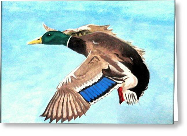 Duck Greeting Card by Poornima M
