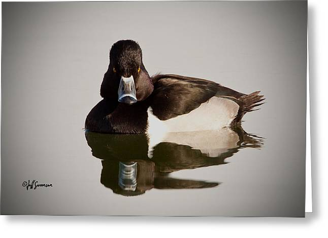 Duck With Attitude Greeting Card by Jeff Swanson