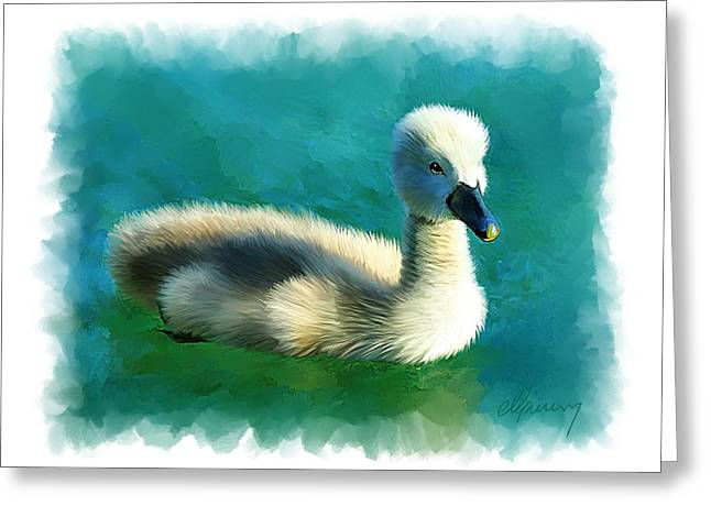 Duckling Greeting Card by Michael Greenaway