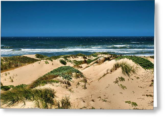Dunes And The Pacific Greeting Card by Steven Ainsworth