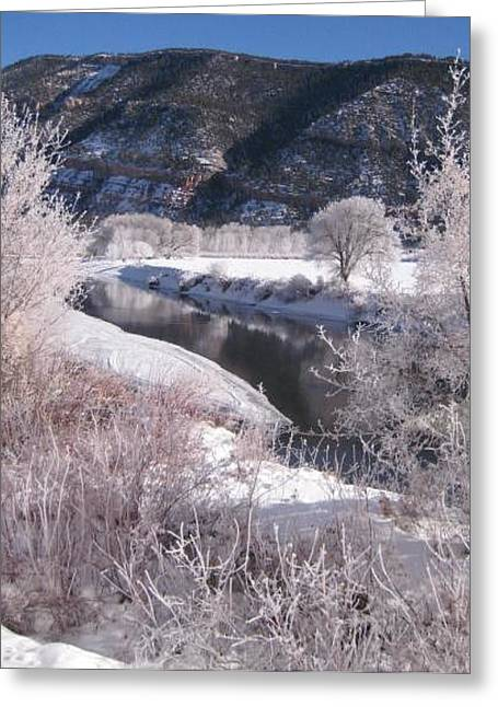 Greeting Card featuring the photograph Durango Snowfall by Bonnie Goedecke