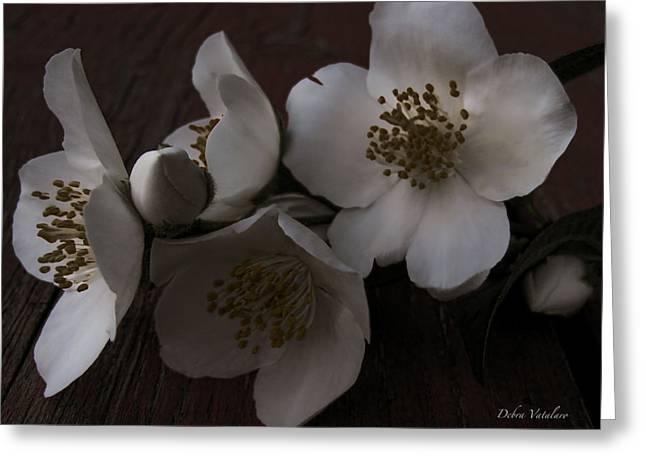 Dusk Blooms Greeting Card by Debra     Vatalaro