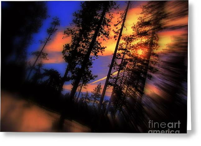 Greeting Card featuring the photograph Dusk by Irina Hays