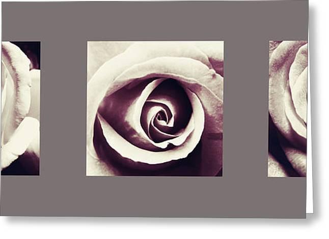 Dusk Roses Greeting Card by Sumit Mehndiratta