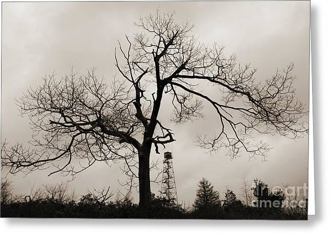 Dusk Winter Tree Silhouette With Fire Tower Greeting Card by John Stephens