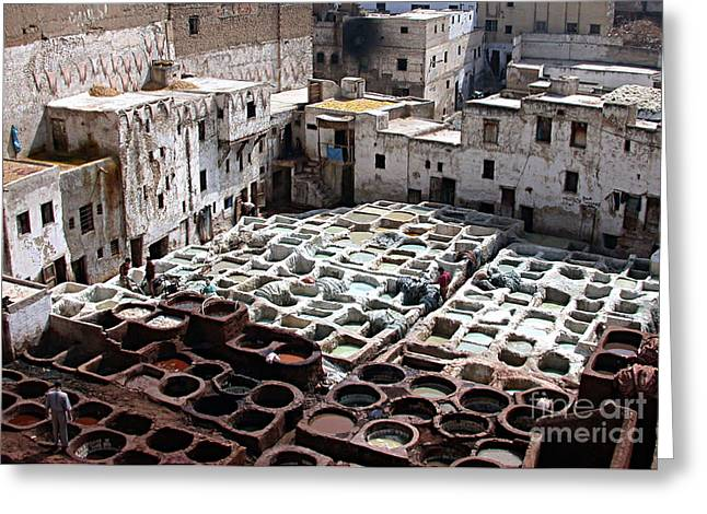 Dyeing Vats Of Fez Greeting Card by Steve Goldstrom