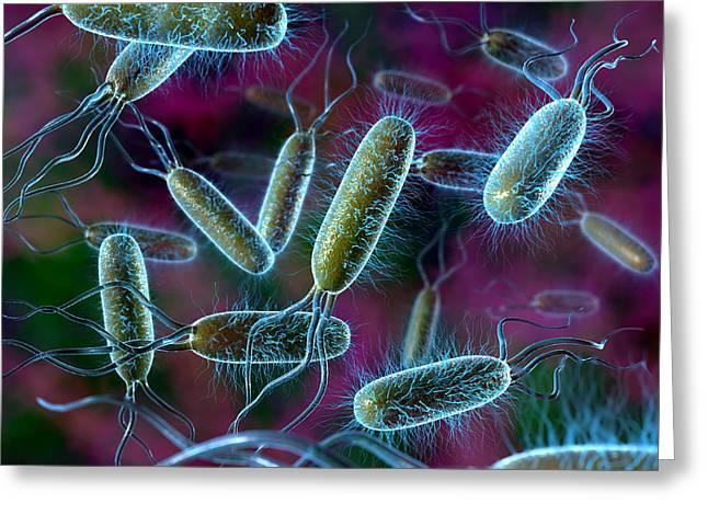 E. Coli Bacteria Greeting Card by David Mack