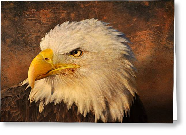 Eagle 47 Greeting Card by Marty Koch