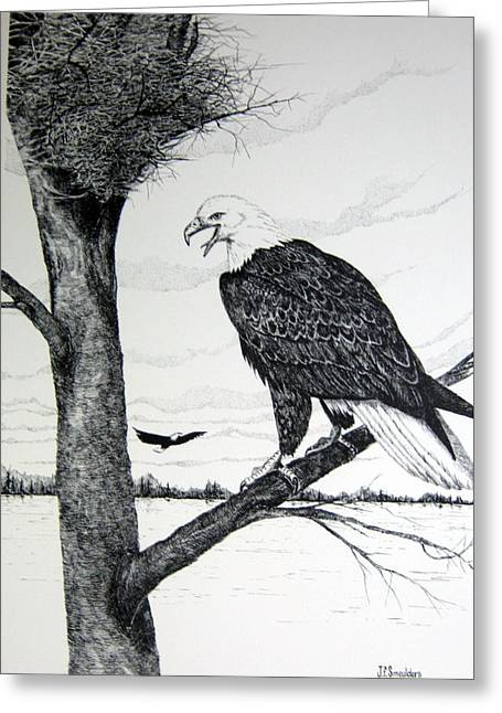 Eagle At Nest Greeting Card by John Smeulders
