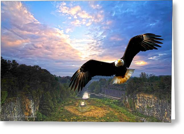 Greeting Card featuring the photograph Eagle At Paint Creek Dam by Randall Branham