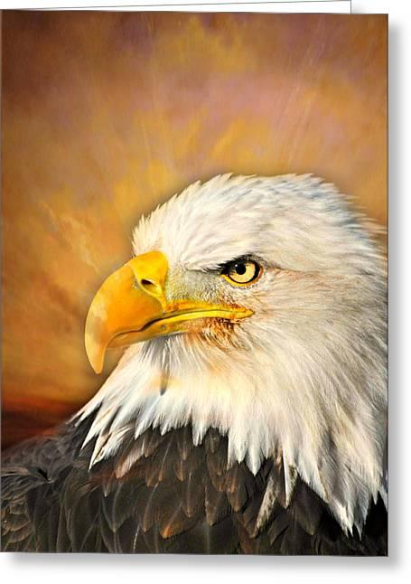 Eagle Burst Greeting Card by Marty Koch