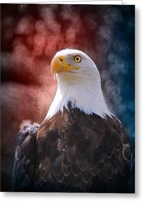 Eagle I Greeting Card by Jai Johnson