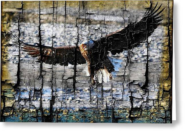 Eagle Imprint Greeting Card by Carrie OBrien Sibley