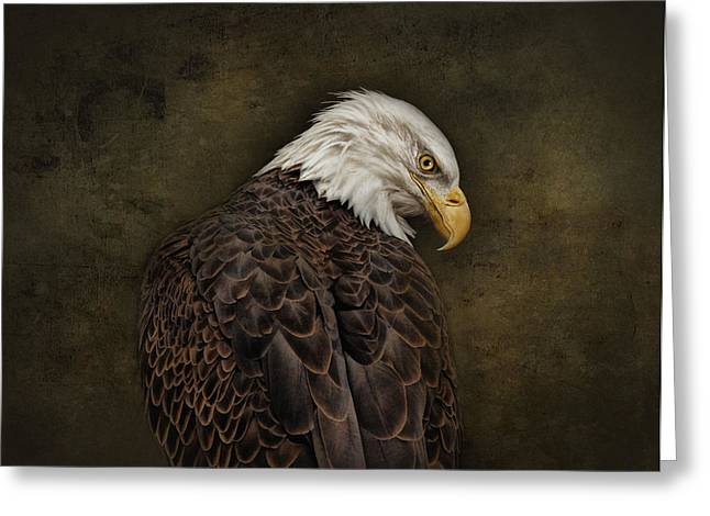 Eagle Profile Greeting Card