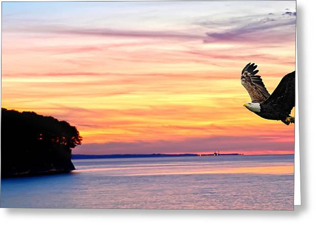 Greeting Card featuring the photograph Eagle Sunrise by Randall Branham