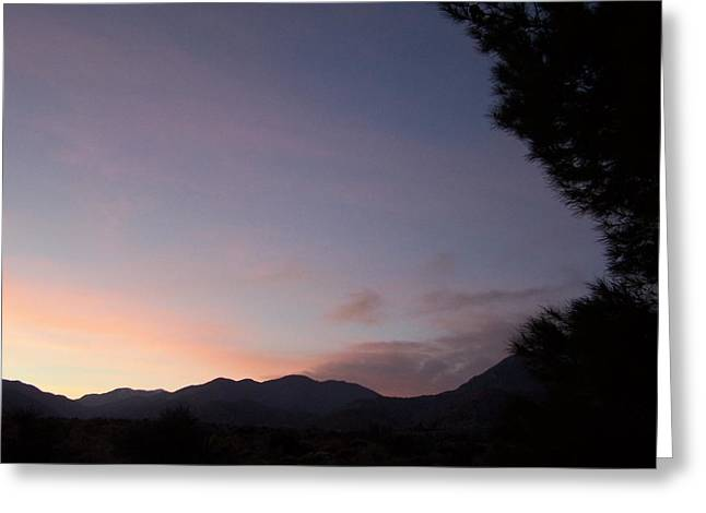 Early Evening Sky Greeting Card by Christine Drake