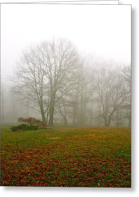 Early Morning Fog Greeting Card by Ann Murphy