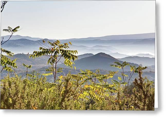 Early Morning Mists Greeting Card