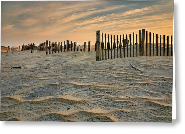 Early Morning On The Dunes II Greeting Card by Steven Ainsworth