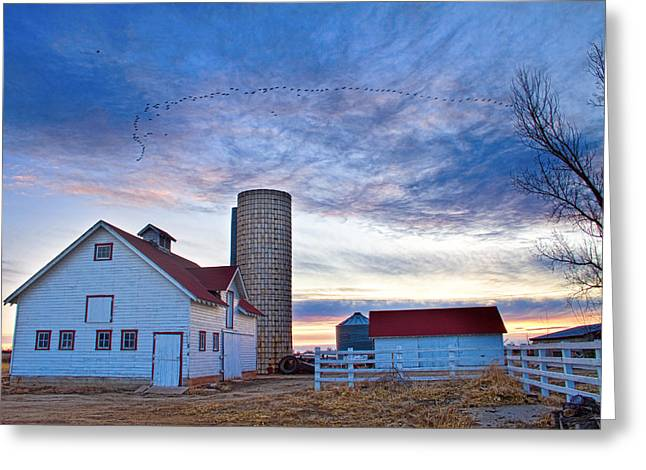 Early Morning On The Farm Greeting Card by James BO  Insogna