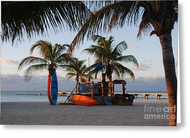 Early Morning Peace In Key West Greeting Card by Susanne Van Hulst