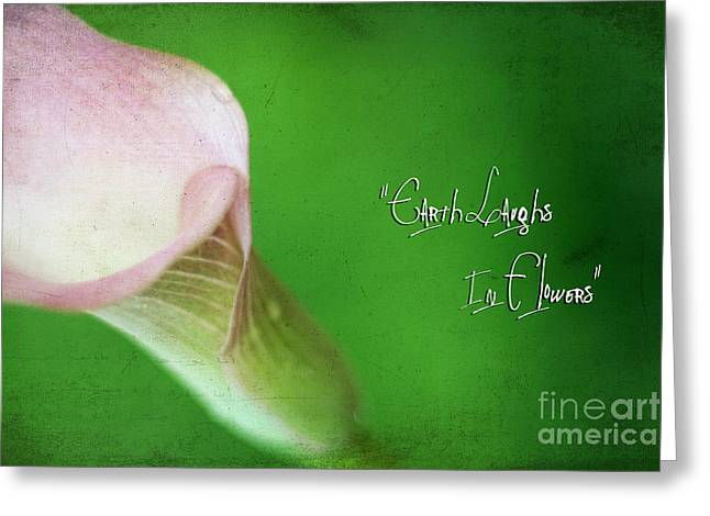 Earth Laughs In Flowers Greeting Card by Darren Fisher