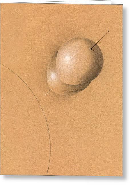 Earth Log I Greeting Card by Albert Notarbartolo