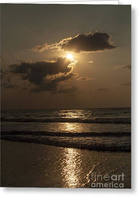 East Coast Sunrise Greeting Card by Darleen Stry