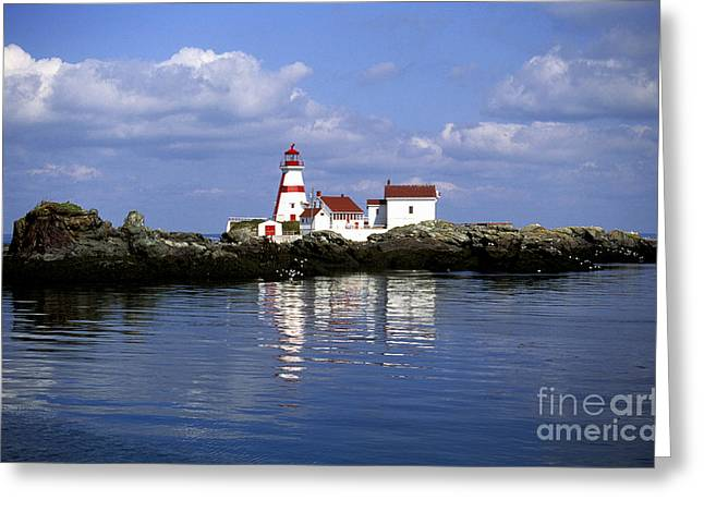 East Quoddy Head Lighthouse Greeting Card by Carol Barrington
