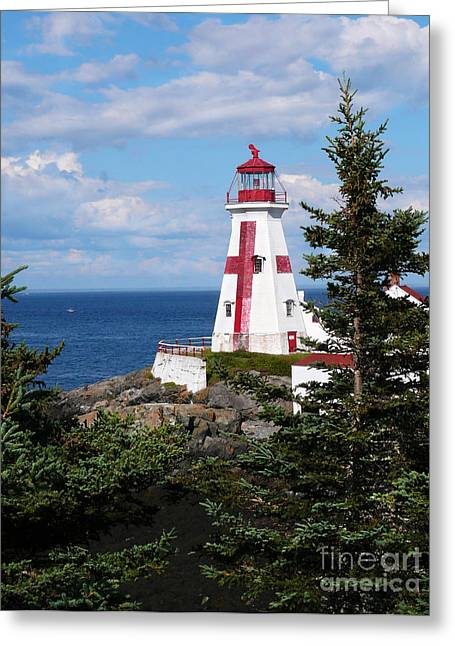 East Quoddy Head Lighthouse Greeting Card by Jeanne  Woods