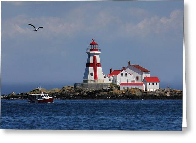 East Quoddy Head Lighthouse Greeting Card by Lori Deiter